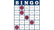 Bingo Screenshot